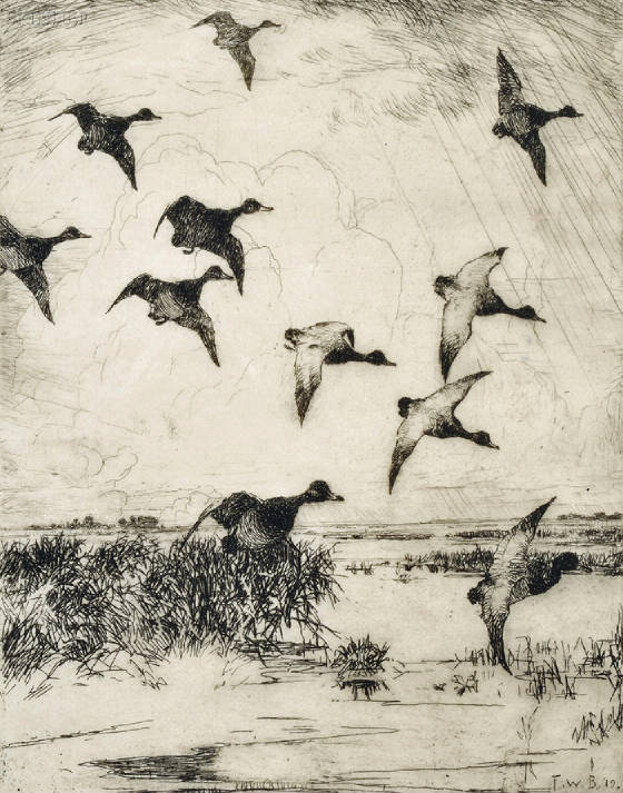 Master_Collection/Benson-Flying_Ducks.jpg